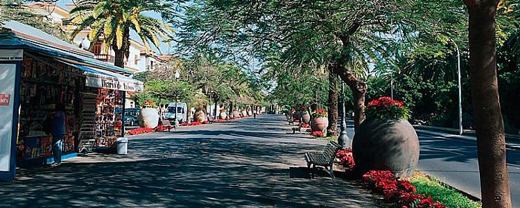 Rambla, Santa Cruz de Tenerife